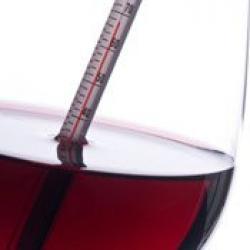 вино правильная температура